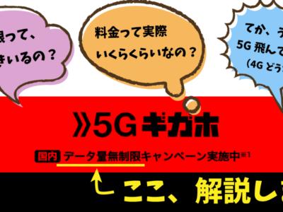 ドコモ 5Gギガホ データ量無制限